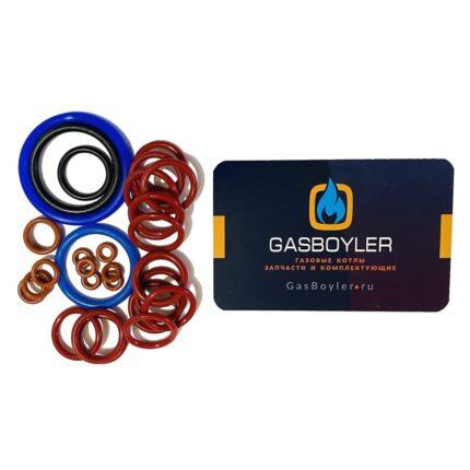 Комплект уплотнительных колец (прокладок) для котлов Daewoo GasBoiler 250-300 MSC